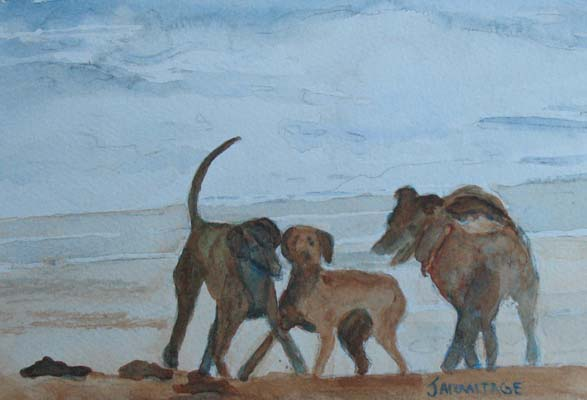 Three Dog Afternoon (5 x 7) SOLD