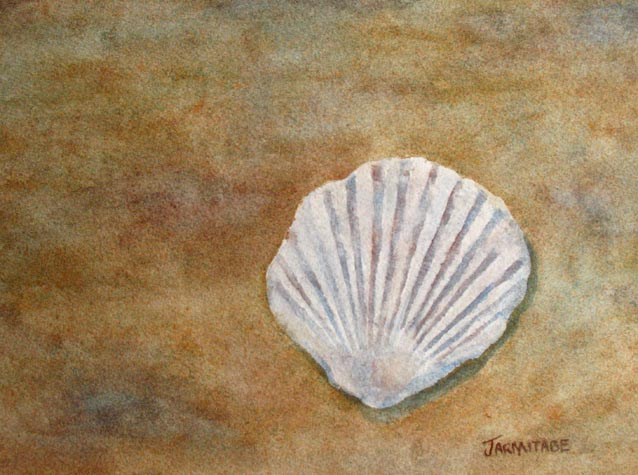 The Fossil Shell (6 x 9) $75.00