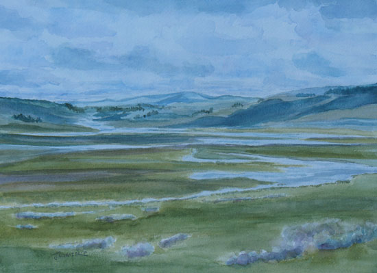 Wet Summer in Big Sky Country a Watercolor by Jenny Armitage