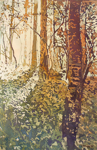 Looking Up Towards Home, Original Painting of Light Through Trees by Jenny Armitage