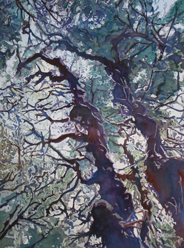Spring Tangle, Original Painting by Jenny Armitage