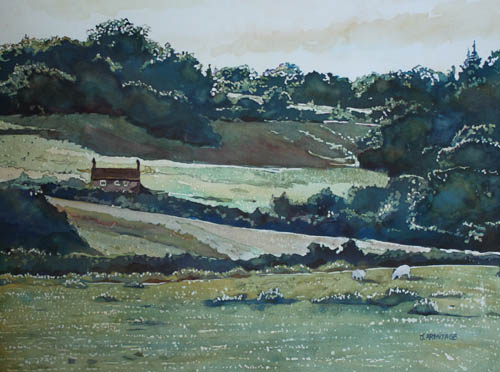 Late Afternoon Denbighshire, Original Landscape by Jenny Armitage