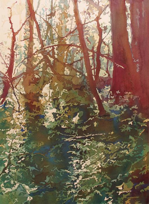 Back Lit Bramble, Watercolor Painting by Jenny Armitage