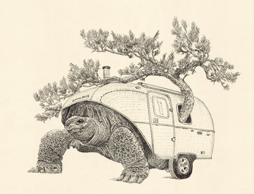 Green Traveler, Surreal Drawing of Tortoise with Camper Shell, by Jenny Armitage