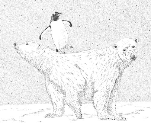 Bi Polar Bear, Surreal Pen and Ink, by Jenny Armitage